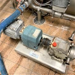 """P0625 Rotor Lobe Pump 1"""""""
